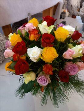 Explozie de culoare in 51 de trandafiri